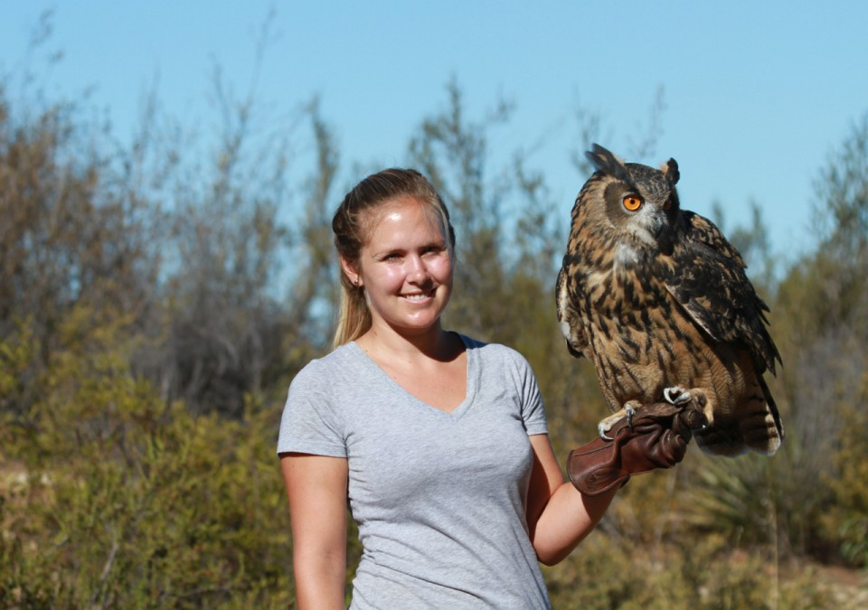 Eurasian Eagle owl encounter