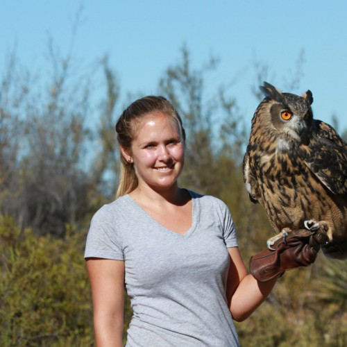 Free Flight Macaw Experience and Owl Prowl