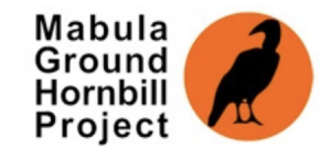 mabula ground hornbill project