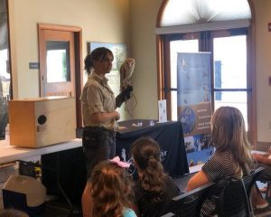 barn owl education program museum