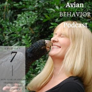 07 How To Be an Expert Animal Trainer With Barbara Heidenreich