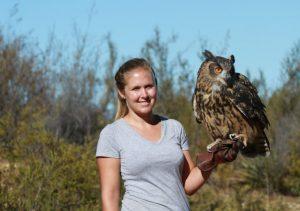 manning an owl