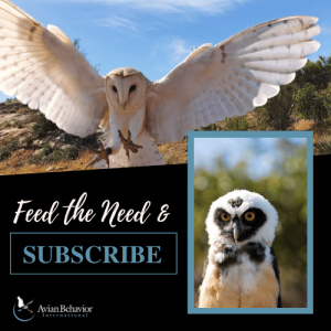 Subscribe to Avian Behavior
