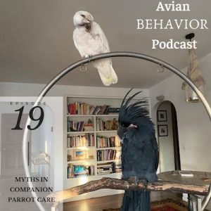 19 Myths in Companion Parrot Care