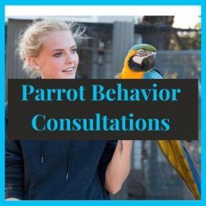 Parrot Behavior Consultations