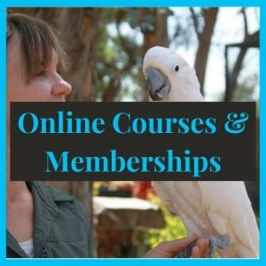 Online Courses and Memberships