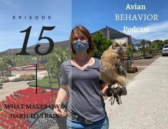 podcast episode 15