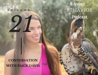 21 Conversation With Paige Davis