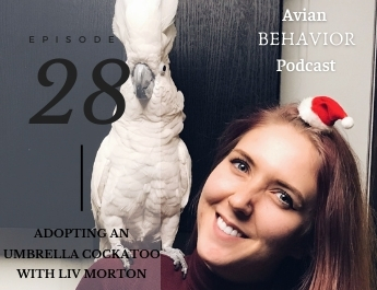 28 Adopting an Umbrella Cockatoo with Liv Morton