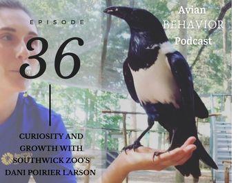 36 On curiosity, leadership and evolution as an animal trainer with Dani Poirier Larson