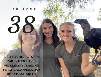 38 Bird Training Stories Part 2: Veterinary Training, Practical Application of CAT, and More!